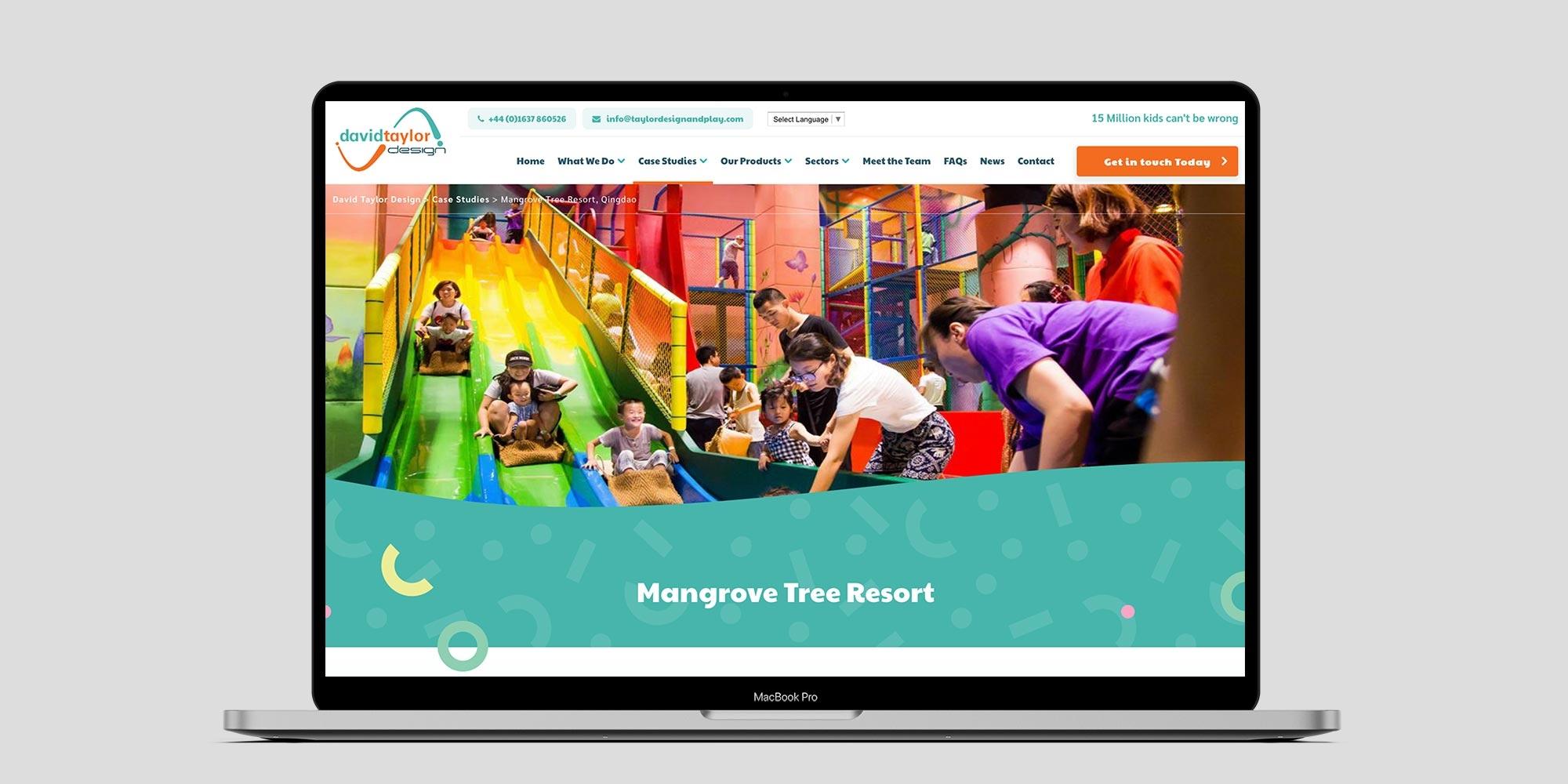 David Taylor Design Wordpress Website Design on Laptop